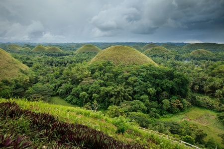 bohol: The Famous Chocolate Hills in Bohol, Philippines Stock Photo