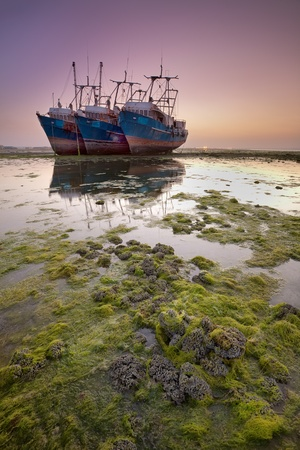 Three Large Ships Stranded in Low Tide
