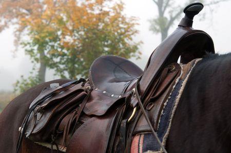 horse saddle: Detail of a horse saddle, horizontal shot.
