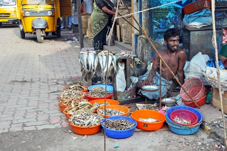 MADURAI, INDIA - 6 NOVEMBER, 2009: An unidentified Indian man sell fishes on a street in Madurai on November 6, 2009. Street bazaar is a common way how to sell and buy stuffs in India.