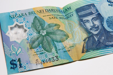 foreign currency: Picture of Bruneian currency - dollar - on a white background.