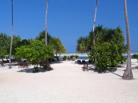 A deserted beach on the tropical island of Zanzibar. Stock Photo - 8964698