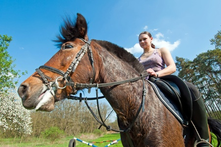 Pretty girl and bay horse during the sunny day. Stock Photo - 10307676