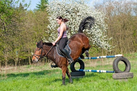 horseback: Pretty girl and bay horse during the sunny day. Stock Photo