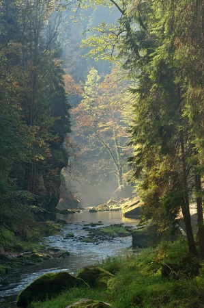 rock creek: View of autumn river with the sunrise sunbeams.