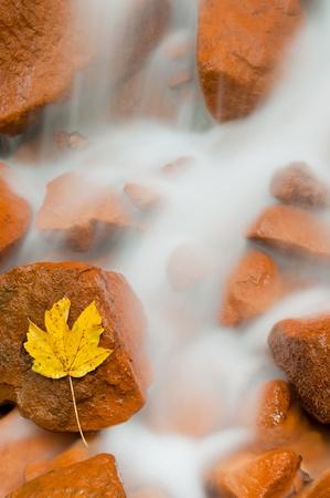 Detailed view of a beautiful fresh waterfall. Stock Photo - 11316361