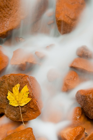 czech switzerland: Visualizzazione dettagliata di una bella cascata fresca.