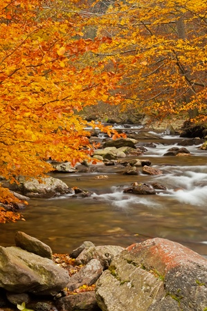 View of beautiful small waterfall during the autumn time. photo