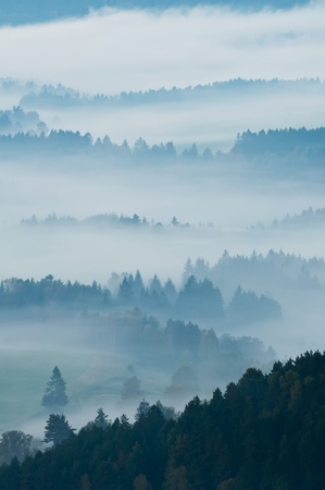 European countryside during the misty sunrise. photo