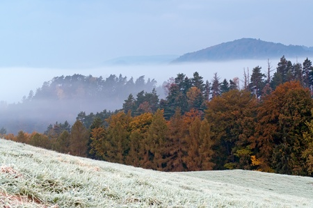 Beautiful autumn morning hoarfrost in the countryside. photo