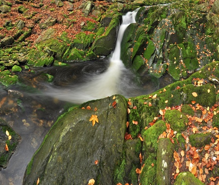 ferruginous: View of beautiful waterfall during the autumn time, square format.