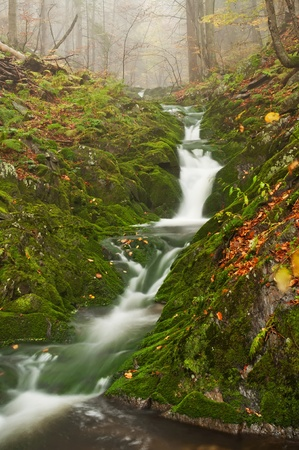 ferruginous: View of beautiful waterfall during the misty day.