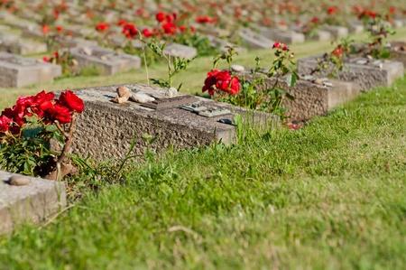 terezin: Vista dettagliata del cimitero di Terezin, Repubblica ceca. Al giorno d'oggi fa parte del monumento memoriale del ghetto ebraico che Terezin è stato durante la seconda guerra mondiale.