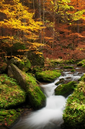 ferruginous: View of a beautiful creek during the autumn time. Stock Photo