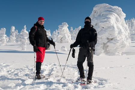 trekking pole: Winter tourists with snowshoes during a beautiful sunny day.