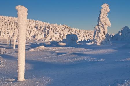 Winter wonderland during the beautiful sunrise. photo