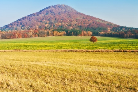View of an autumn European countryside during the dunny day. photo