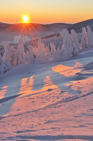 winter wonderland: Winter wonderland durante il sorgere del sole colorato. Archivio Fotografico