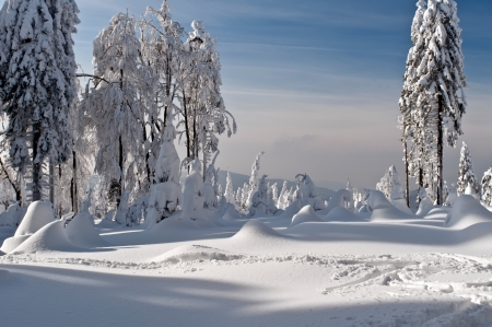 Beautiful winter wonderland during the sunny day  photo