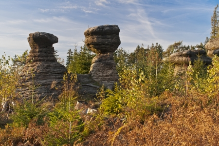 Rocky Mushrooms in the rocky town of Adrspach in the Czech Republic. photo