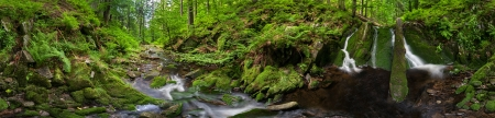 Panoramic view of a beautiful creek meander, 360 degree panorama. photo