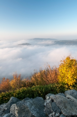 View of a beautiful misty morning on the top of the hill. photo