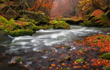 View of a beautiful autumn creek in Czech-Saxony Switzerland, panoramic picture. Stock Photo