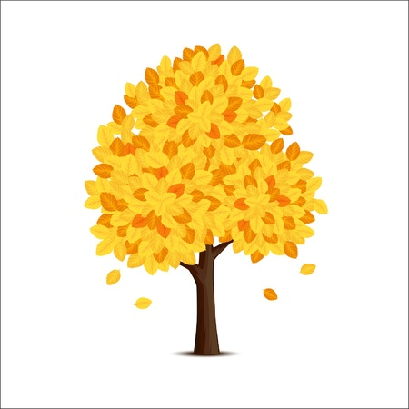 tree with yellow leaves on a white background Stock Vector - 16630147