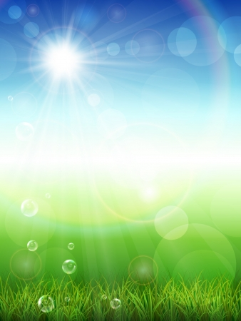 springtime background:  illustration of the summer background with green grass