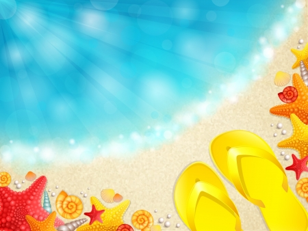 Vector illustration of a beautiful beach with shells Stock Vector - 19377556