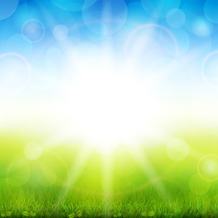Vector illustration of a beautiful summer background with green grass Vector