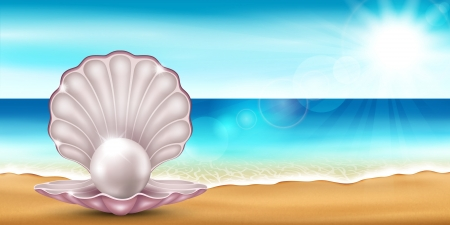 tropical beach panoramic: Vector illustration of the sea beach with a beautiful shells Illustration