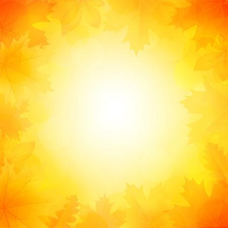 Vector illustration of a beautiful autumn background Illustration