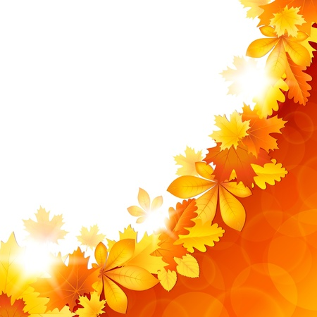 Vector autumn illustration background with bright leaves Illustration