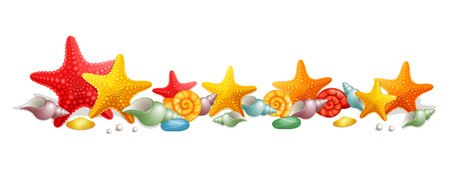 subsea: Vector illustration sea stars and seashells on a white background
