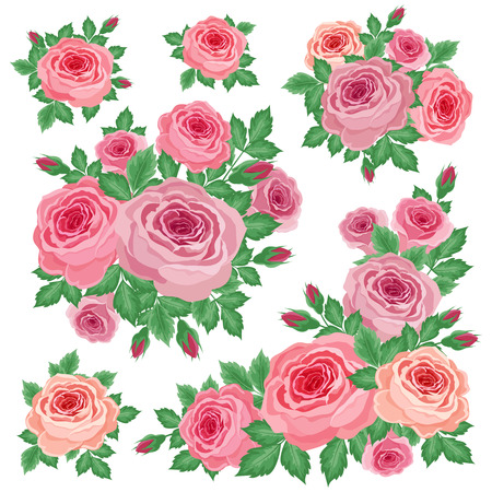 vegetal: Vector illustration of a bouquet of roses on a white background