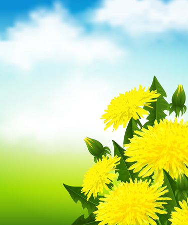 Vector illustration of a yellow dandelion flowers on blue sky background