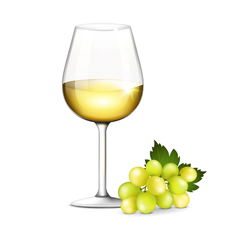 wine glass: Vector illustration of a glass of white wine