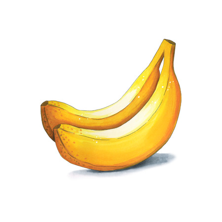 Bananas on a white background. Sketch done in alcohol markers. You can use for greeting cards, posters and design projects Stock Photo