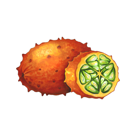 Kiwano fruit on a white background. Sketch done in alcohol markers. You can use for greeting cards, posters and design projects