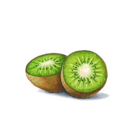 Kiwi fruit on a white background. Sketch done in alcohol markers. You can use for greeting cards, posters and design projects