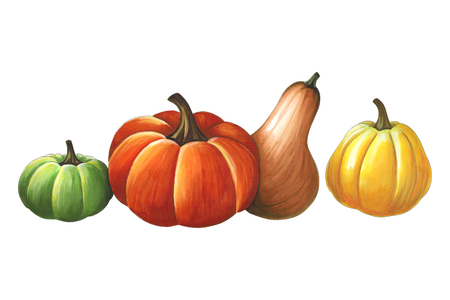 Pumpkins on a white background. Sketch done in alcohol markets. You can use for greeting cards, posters and design projects