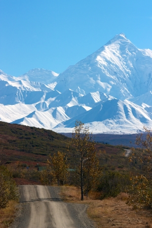 tundra: Alaska Range and hilly road in Denali National Park and Preserve