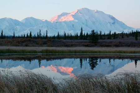 Mt  McKinley in NP Denali during sunrise, from a lake near Wonder Lake campsite