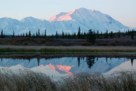 mckinley: Mt  McKinley in NP Denali during sunrise, from a lake near Wonder Lake campsite