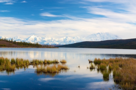 Mt  McKinley taken from Wonder Lake with turfs of grass in water photo