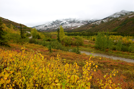 Colourful landscape with high mountains covered with snow in Kantishna in Denali National Park in Unit 42 during fall photo