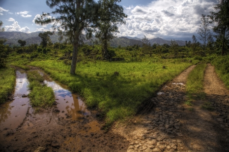 off path: A fork in a dirt track road in Rwanda, to the left is muddy, to the right is dry