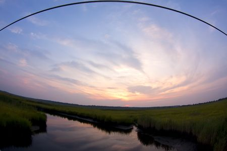 Water reflecting in a grassy marsh shot fisheye power cable above photo