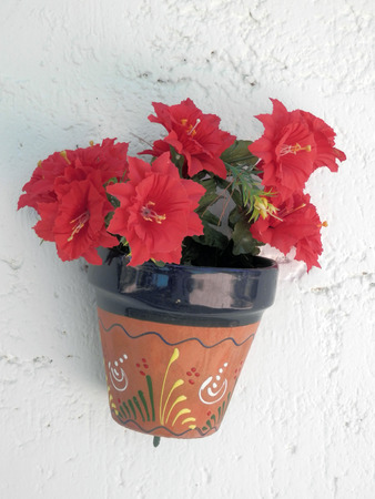 Wall Flower Pot photo